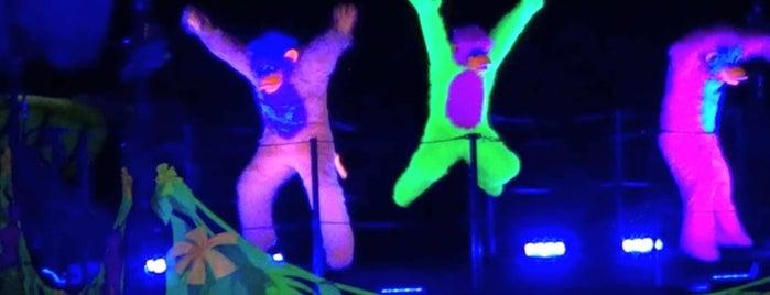 Fantasmic! is one of Disneyland.