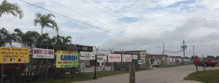 Fleamasters Fleamarket is one of Fort Myers.