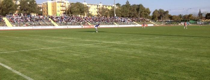 Estadio Santiago Bueras is one of Estadios.