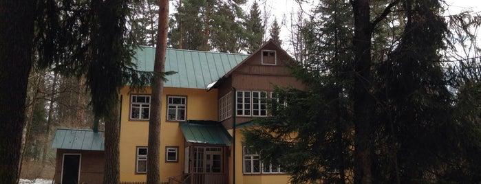 Дом-музей К.И. Чуковского is one of Де.