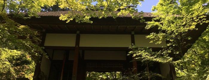 小倉山 常寂光寺 is one of お気に入り.