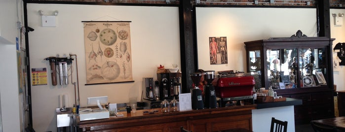 Morbid Anatomy Museum is one of NYC: Newest Indie Cafes and Coffee Shops.