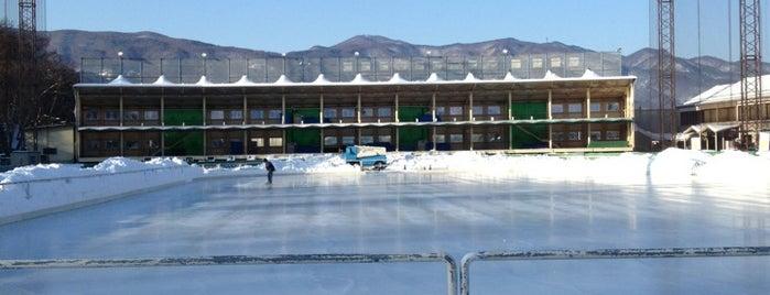 茅野市運動公園国際スケートセンター is one of スケートリンク.