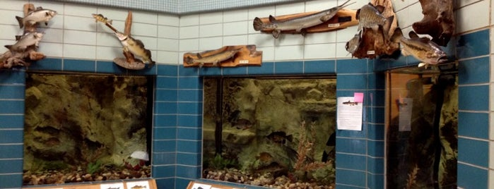 Spirit Lake Fish Hatchery is one of Iowa: State and National Parks.