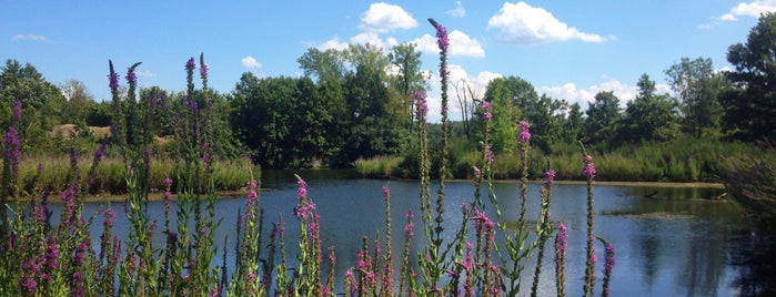 Banner Lakes At Summerset State Park is one of Iowa: State and National Parks.