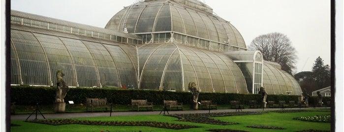 Royal Botanic Gardens, Kew is one of Steampunk London.