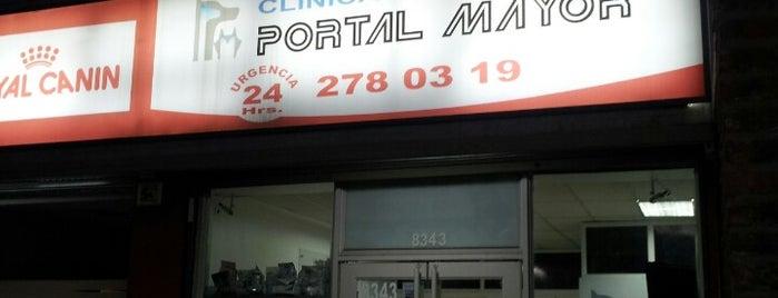 Veterinaria Portal Mayor is one of Peñalolén.