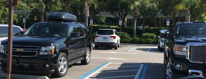 Polynesian Parking Lot is one of Walt Disney World.