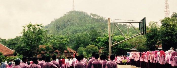 SMA N Klakah is one of Work.