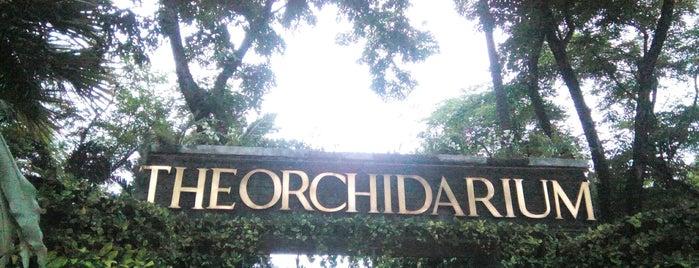 The Orchidarium is one of Filipinler-Manila ve Palawan Gezilecek Yerler.