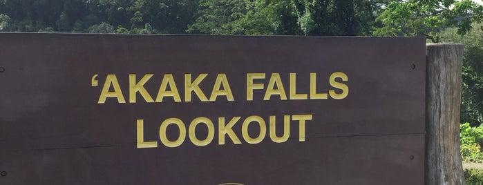 Akaka Falls is one of Enjoy the Big Island like a local.