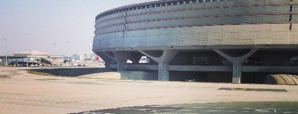 Terminal 1 is one of HAVALİMANLARI.