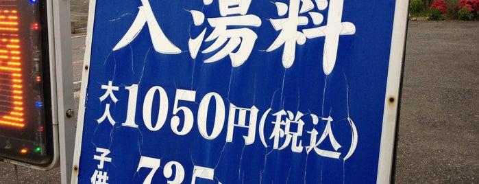 筑波山温泉 つくば湯 is one of りんりんロードポタ♪.