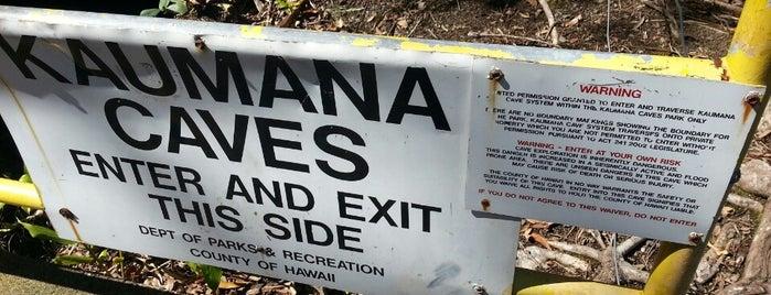 Kaumana Caves is one of Big Island.