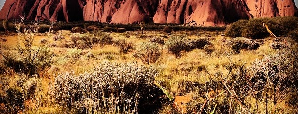 Uluru Sunset Viewing Area is one of To do around Australia.