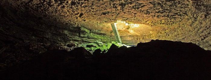 Пещера Гарваница is one of Проекто-разходка.