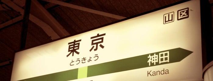 JR Yamanote line Tokyo Sta. is one of 2009.03 Kanagawa Tiba Tokyo.
