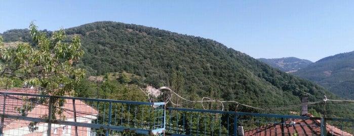 Güneybayır is one of Bursa | Osmangazi İlçesi Mahalleleri.
