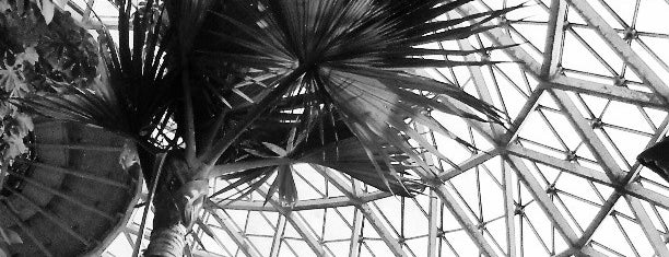 Mitchell Park Horticultural Conservatory (The Domes) is one of A Traveler's Guide to Milwaukee.