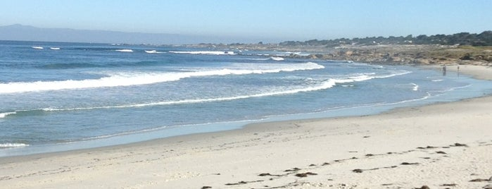 Spanish Bay is one of Dog-Friendly Monterey Peninsula.