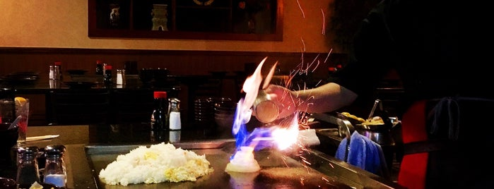 Shoguns Japanese Grill & Sushi Bar is one of Yum.