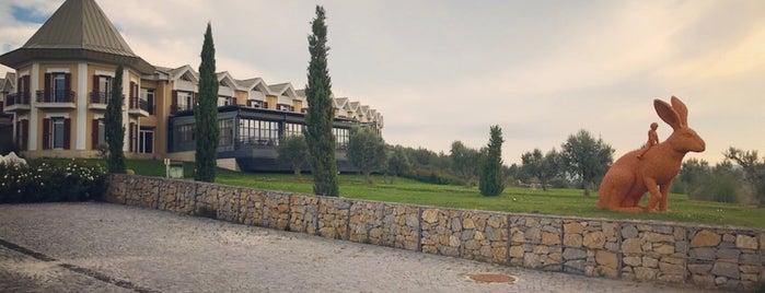 Caelı Hotel is one of Çanakkale.