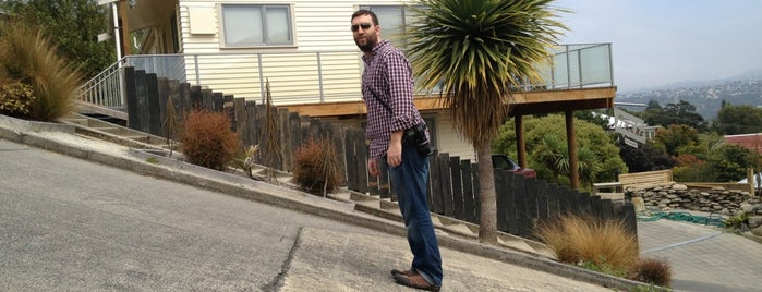 Baldwin Street (The World's Steepest Street) is one of NZ to go.