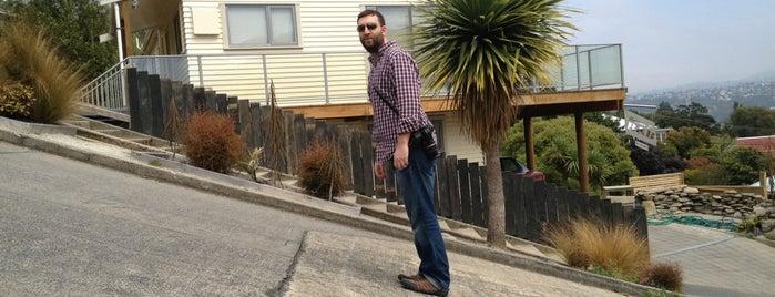 Baldwin Street World's Steepest Street is one of NZ to go.