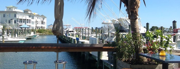 Micky Fins is one of Must-visit Food in Ocean City.
