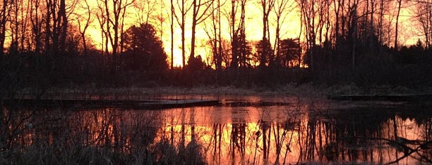 Blandford Nature Center is one of Parks/Outdoor Spaces in GR.