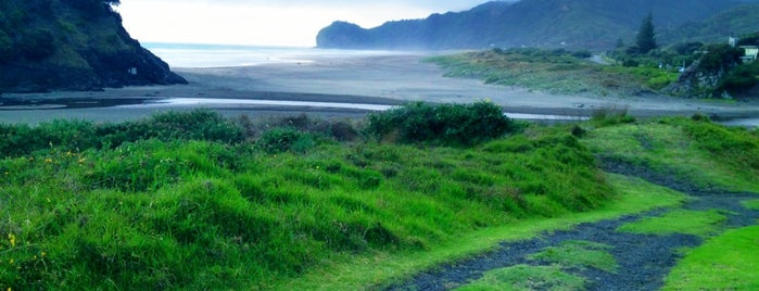 Piha Beach is one of Auckland.