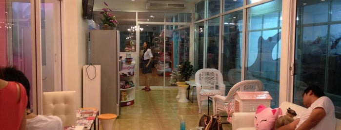 Charming Cats Cafe & Pet Shop is one of Cuisine.