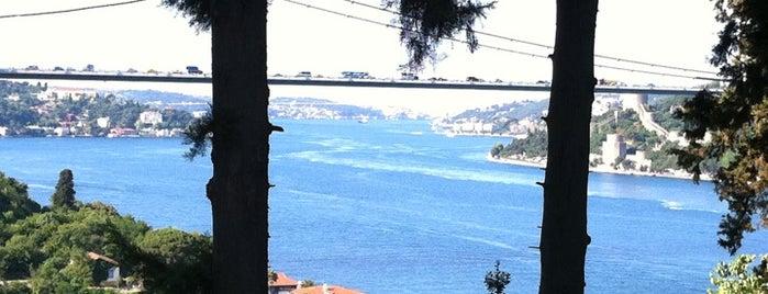 Mihrabat Korusu is one of Istanbul'da Manzara.