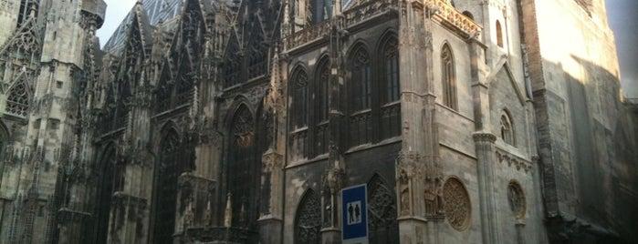 Vienna is one of Vienna tips.