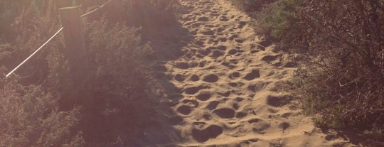 Sand Ladder is one of SF Trails & Overlooks.