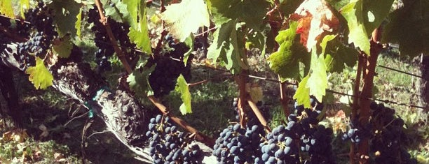 Brix Restaurant and Gardens is one of Wine Country.