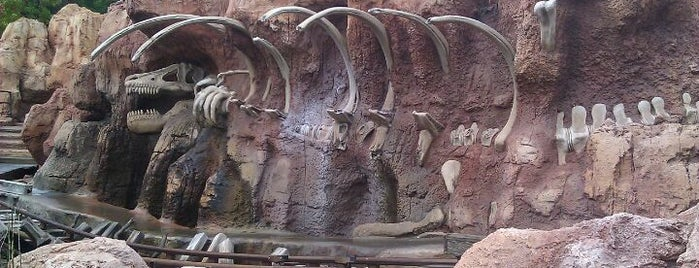 Big Thunder Mountain Railroad is one of Rides I Done...Rode.
