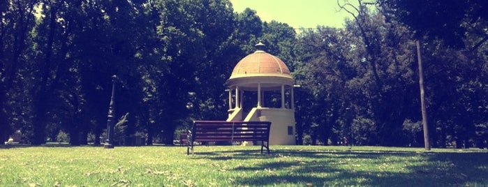 Edinburgh Gardens is one of Love In Dear Melbourne.