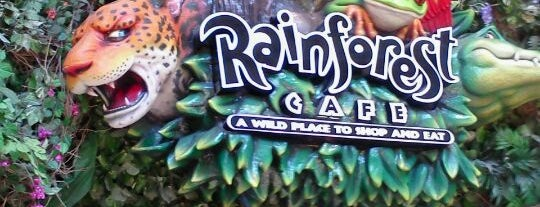 Rainforest Cafe is one of Done.