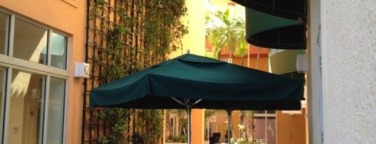 Starbucks is one of My favorite restaurants in Miami.
