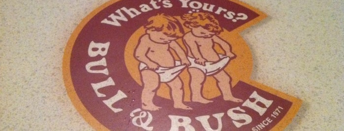 Bull & Bush Pub & Brewery is one of Colorado Beer Tour.