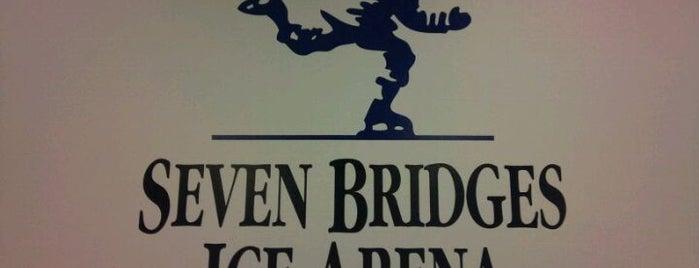 Seven Bridges Ice Arena is one of Chicago Rat Hockey.
