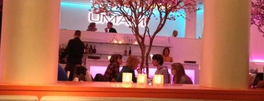 Restaurant Umami is one of Restaurantes por el mundo.