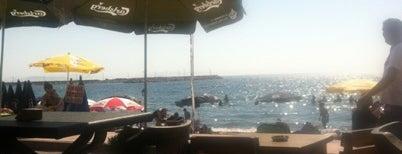 Musti Cafe & Bar is one of Orda burda surda.