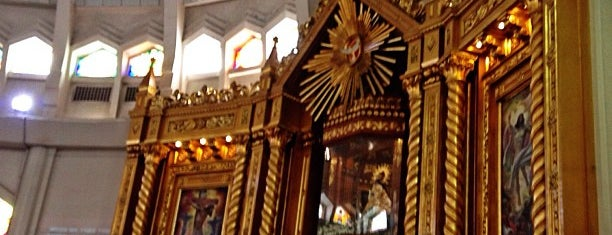 National Shrine of Our Lady of Peace and Good Voyage (Antipolo Cathedral) is one of Churches/ Places of Worship.