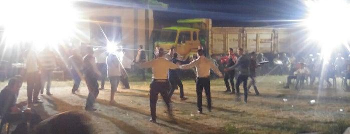 Doğalar is one of Kütahya | Merkez Köyler.