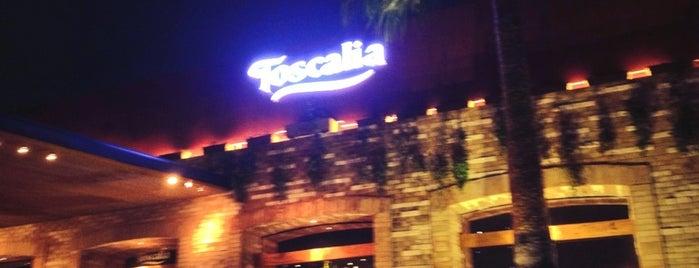 Toscalia is one of Comidita rica en Puebla.