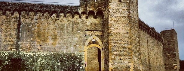 Fortezza Montalcino is one of Toscana.