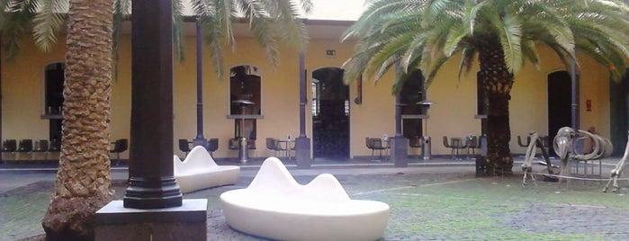 Museo de la Naturaleza y el Hombre is one of Islas Canarias: Tenerife.