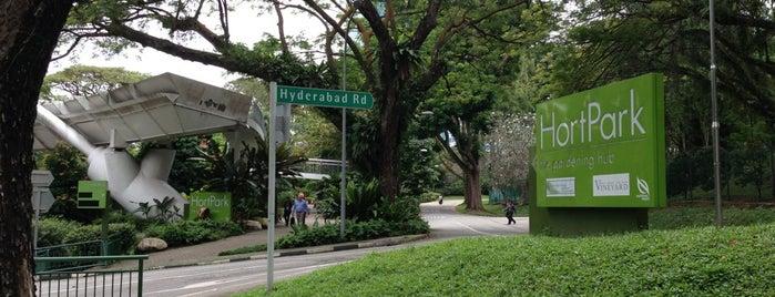 HortPark is one of Trek Across Singapore.